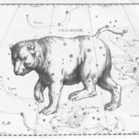 The Greek Myth of Ursa Major