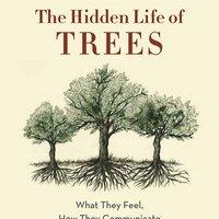 Hidden Life of Trees by Peter Wohllenben