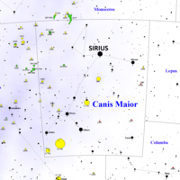The Canis Major Constellation