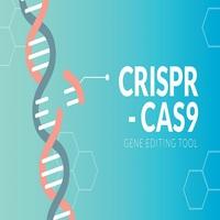 CRISPR - The Gene Editing Tool